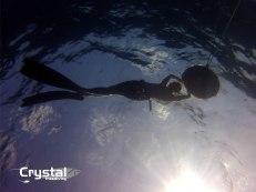 rest between freedives