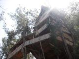 Tree houses!