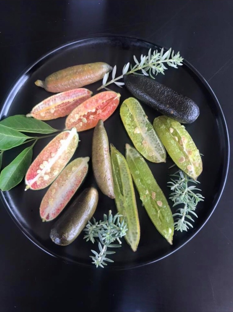 Coloured finger limes on black plate