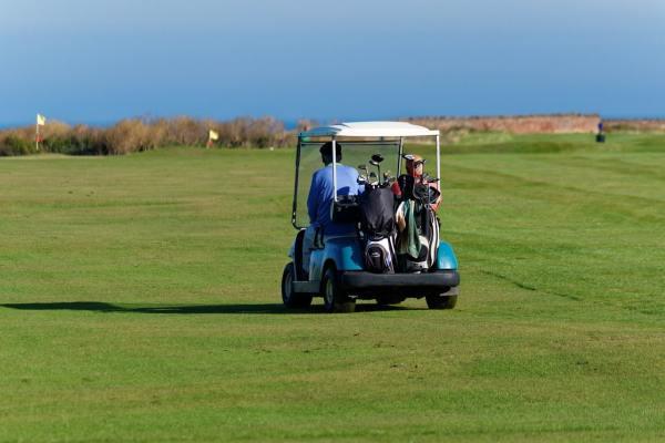 golf buggy, golfers, buggy