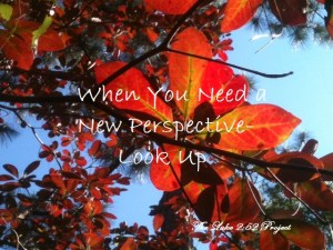 When You Need a New Perspective-Look up!