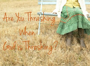 Are You Thrashing When God is Threshing?