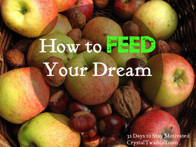 How to Feed Your Dream
