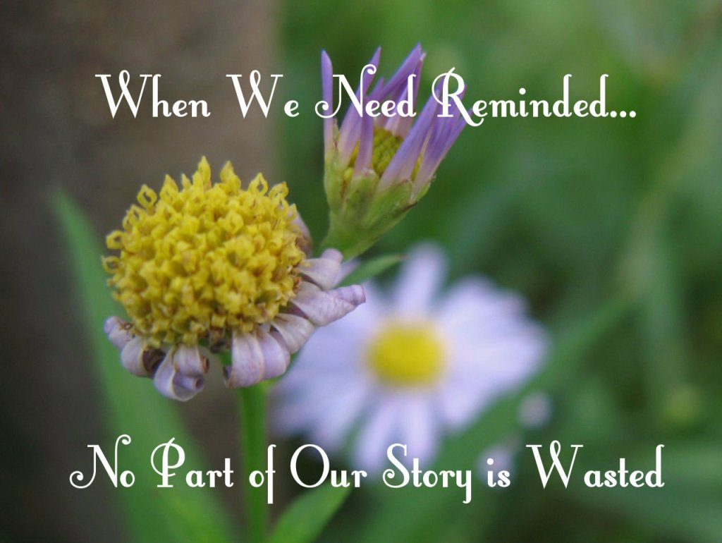 When We Need Reminded…No Part of Our Story is Wasted
