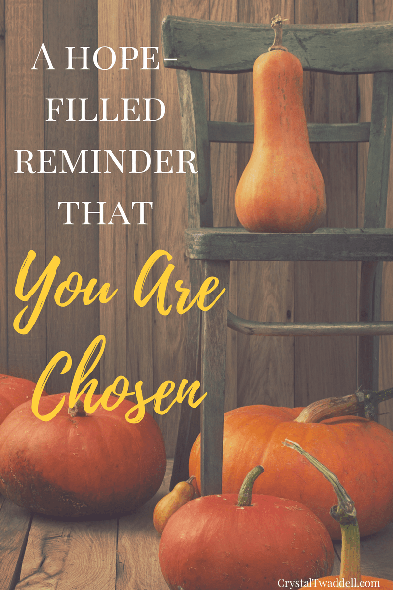 A Hope-Filled Reminder: You Are Chosen {Link-Up}