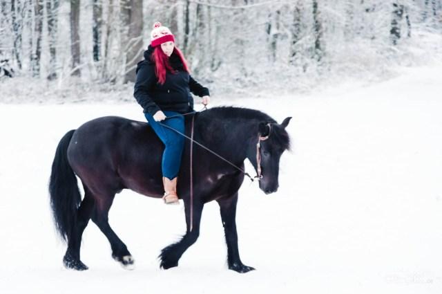Nina und Spirit im Schnee II