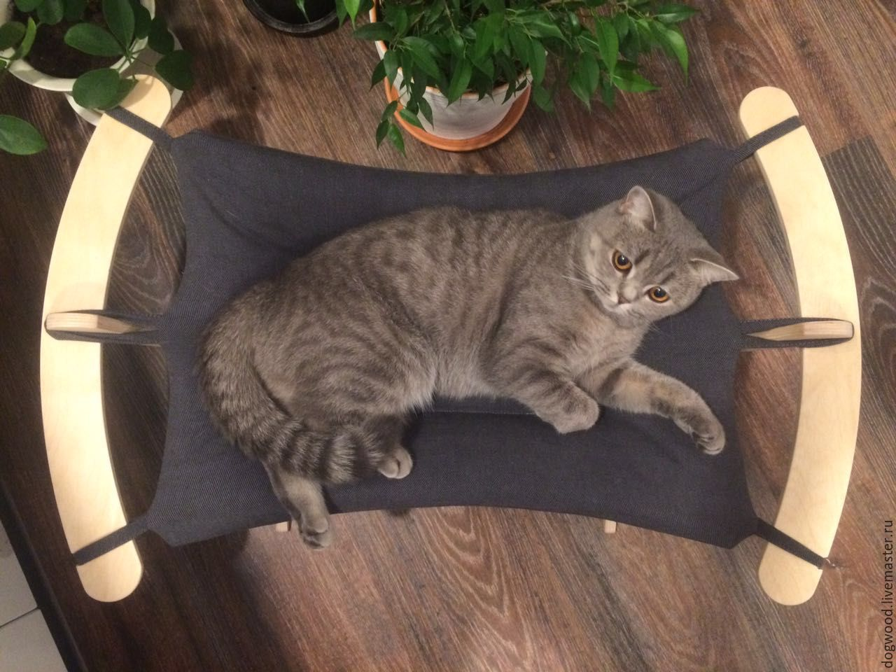 Cat Hammock Soft Gray Shop Online On Livemaster With