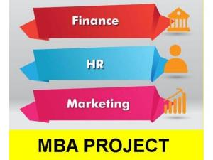 project reports for mba banking and finance Banking and finance lie at the heart of booming international economies, driving them forward and keeping the wheels of commerce moving the global banking and finance mba is designed for professionals who aspire to a career in global banking and finance.