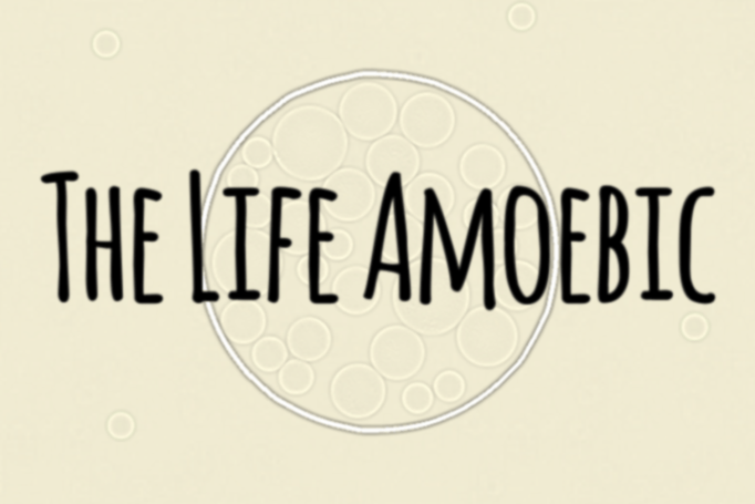 The Life Amoebic