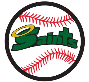 seton-catholic-central-baseball-log