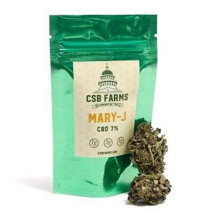 Mary-J | CSB Farms