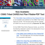 CARES Act Plan Fillable PDF Tool 082520
