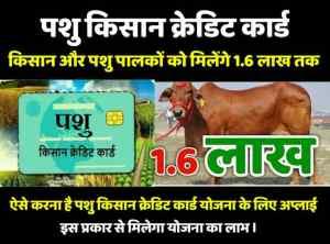 pashu Kisan credit card scheme