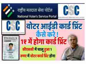 CSC voter ID card service start , CSC voter Service registration, सीएससी से होगा भारतीय निर्वाचन आयोग के काम । NVSP work from CSC