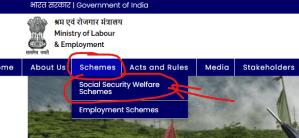 eshram portal schemes