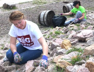 Casey Sigrist, 21, junior of Scottsbluff, pulls weeds at the Railroad Park in Crawford. —Photo by Janelle Kesterson