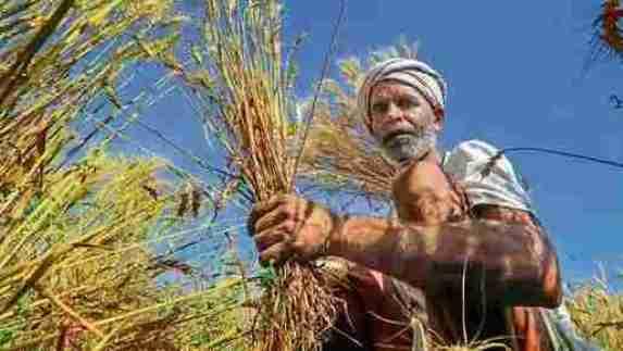 किसान कर्ज माफी योजना