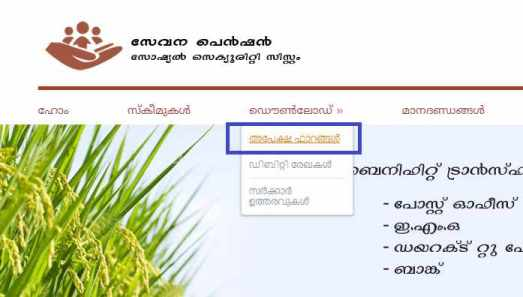 Kerala Widow Pension Scheme online
