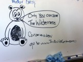 Wilderness Act by Madi