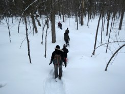 Snowshoeing through the wilderness