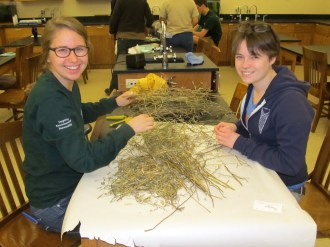 Heather and Kaelie collecting seeds