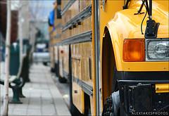 School Buses - Flickr