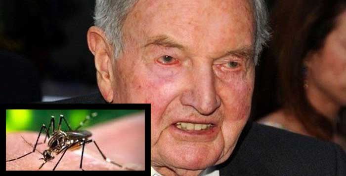 1947 Rockefeller Patent Shows Origins Of Zika Virus And What About Those Genetically Modified Mosquitoes