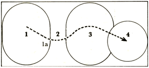 Two ovals and a circle with the numbers 1 to 4