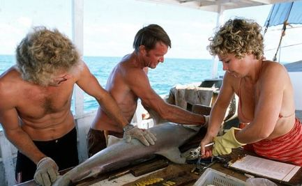 Three people at work on a boat, tagging a shark.