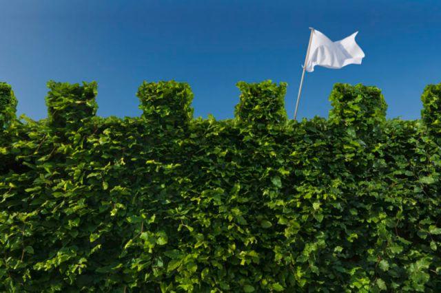 Capturez le drapeau avec votre code dans le défi RunCode ce week-end.