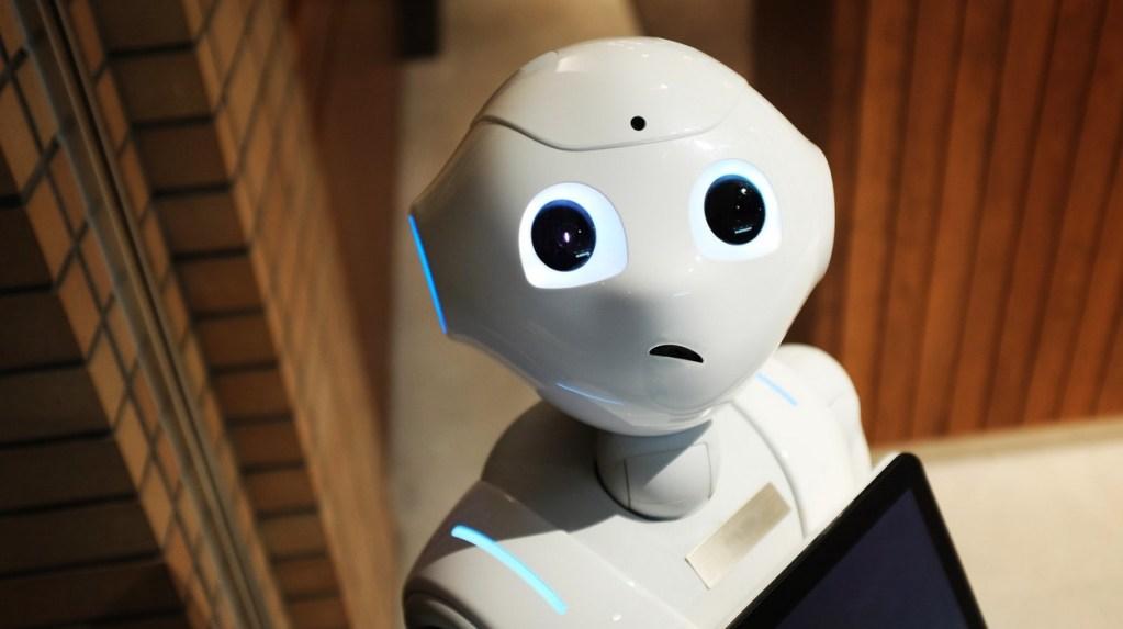 les-robots-pousses-apprennent-les-bases-de