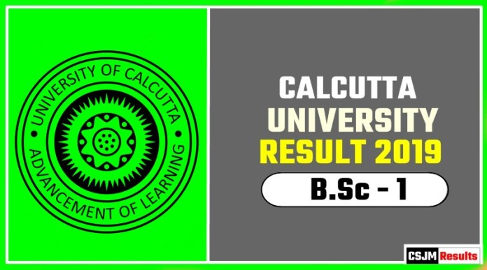 Calcutta University BSc 1st Year Result 2019