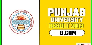 PUCHD BCOM 1st 2nd 3rd Year Result 2019 Pujab University