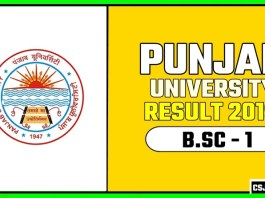 PUCHD BSC 1st Year Result 2019 Pujab University