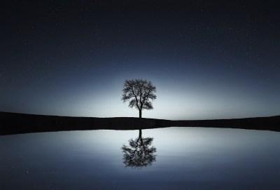 Reflection of Infinite Reality