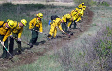 "(Air Force photo by Chris Miller)  Firefighters participating in the Wildfire Academy, hosted by the 721st Civil Engineer fire department, dig a fire line or ""stop line"" at Fort Carson during a training exercise. Stop lines are fire control measures designed to cut off a wildfire before it spreads. Approximately 100 enlisted and civilian fire fighters from Peterson, Cheyenne Mountain and other local federal, state and local agencies took part in the week-long training academy which culminated with a 100 acre live fire exercise conducted at Fort Carson and was designed to promote first responder teamwork."