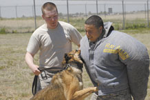 U.S. Air Force photo/Scott Prater Staff Sgt. Albert Collister, right, endures an attack from Max K351, a military working dog, while posing as a suspect during a demonstration at the Crime Prevention Day event held May 27 at the Schriever visitor's center. Sergeant Collister and Staff Sgt. Whitney Young, left, are members of the 21st SFS military working dog unit that operated the demonstration.