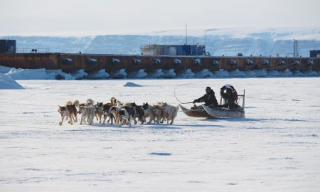 (U.S. Air Force by 1st Lt. Alexandra Swanson) THULE AIR BASE, Greenland – Greenlandic dogsled teams race to the finish during the Thule Armed Forces Day celebration April 5, 2015. Armed Forces Day is an annual event where Thule AB opens its gates to promote interaction and a cultural learning experience with local Greenlandic villagers through dogsled races, craft sales, a buffet at the Top of the World Club and a chance for a ride in an Air Greenland helicopter.