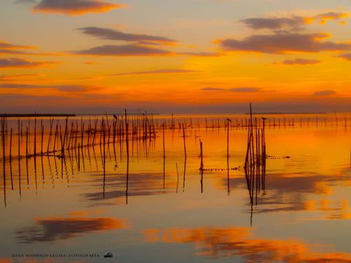 Sunset at 'La Albufera'