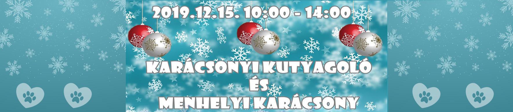 Karácsonyi Kutyagoló és Menhelyi Karácsony❄️🎄 2019.12.15.