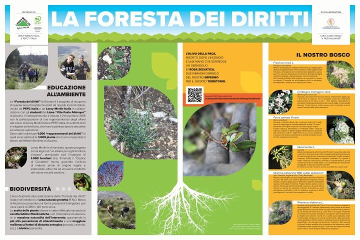Pannello Foresta dei Diritti
