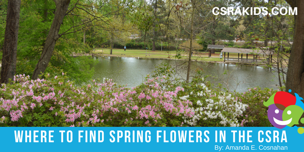 Where To Find Spring Flowers