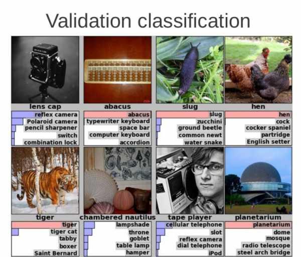 Распознавание картинок – Поиск по картинке, фото или ...