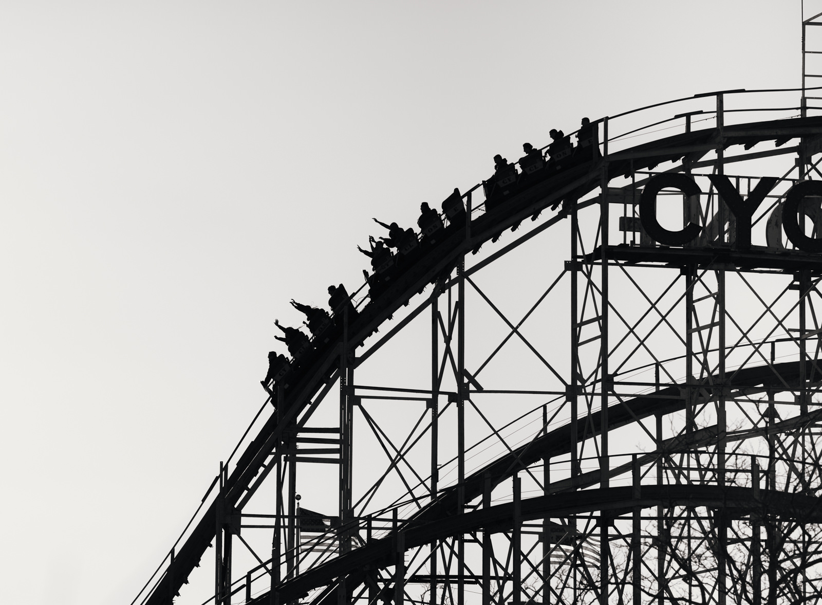 Tales Of A Non Unicorn A Story About The Roller Coaster Of Job Searching