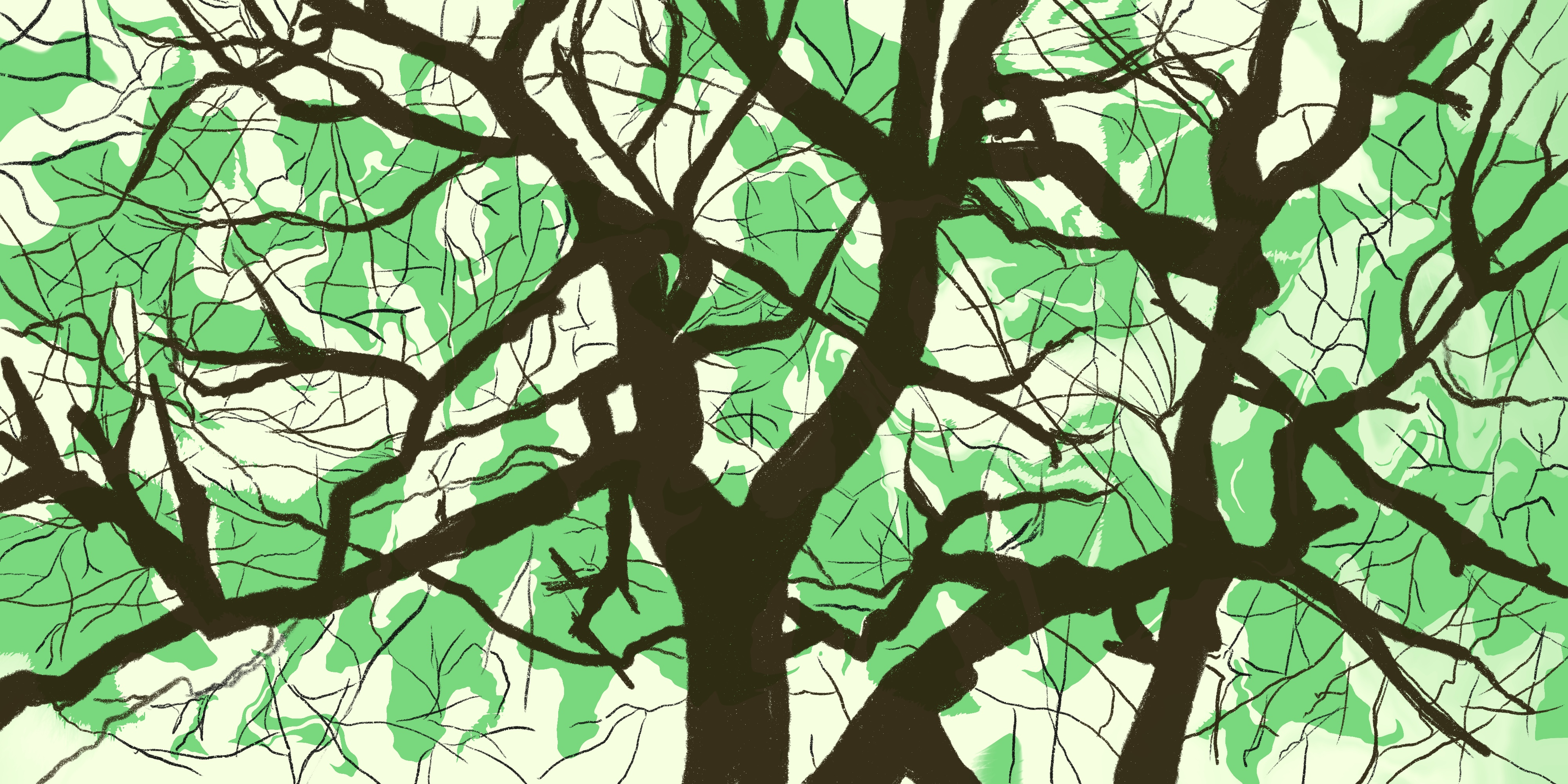 Tree illustration with green background
