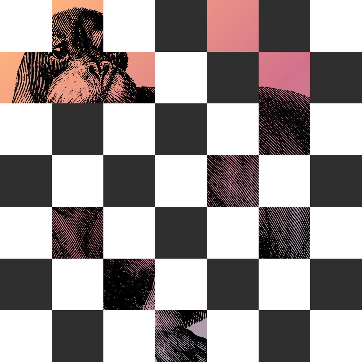 Checkerboard Reveal