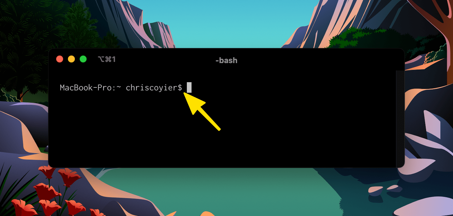 To $ or Not to $: Displaying Terminal Code Snippets