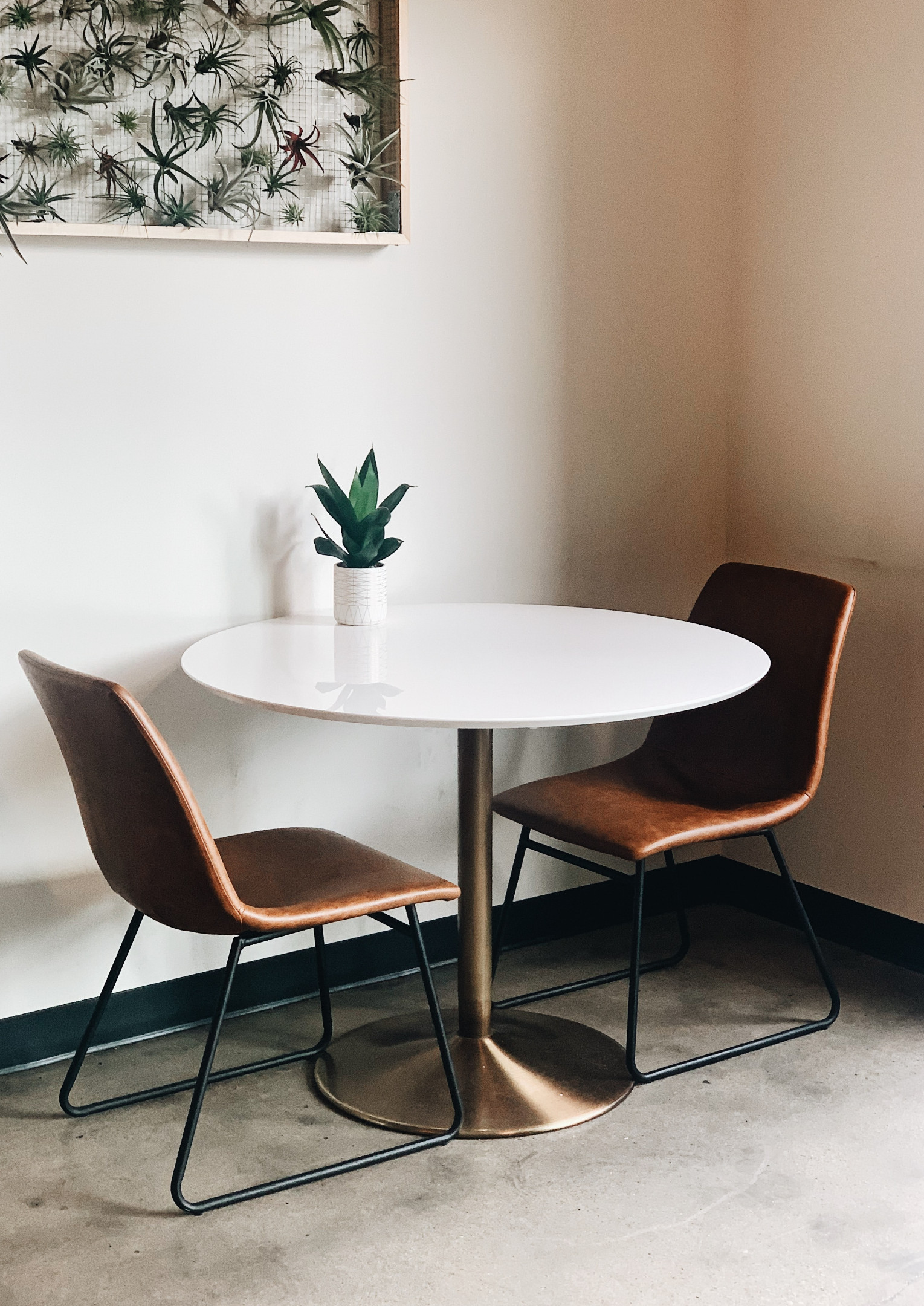 Two brown backed leather chairs with a black frame and legs around a white table with a decorative green succulent plant in a white vase.