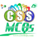 CSS MCQs with answers pdf