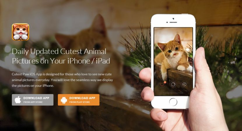 Cutest Paw iPhone / iPad App
